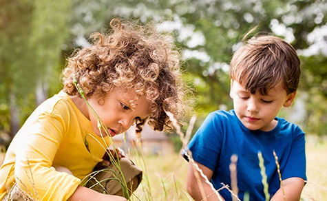 Children investigate outdoors.