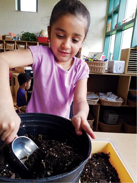 Girl using shovel to plant seeds