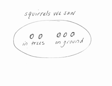 Counting how many squirrels have been seen