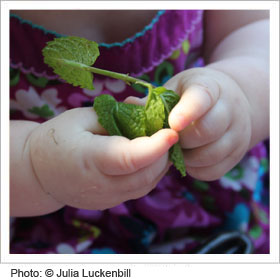 Close up of child playing with leaf
