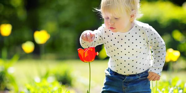 Toddler outdoors touching a flower in the garden
