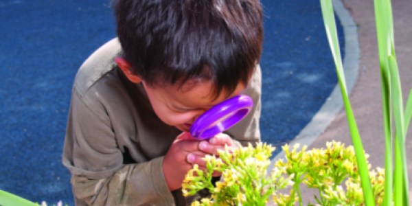 Boy looking at a plant through a magnifying glass