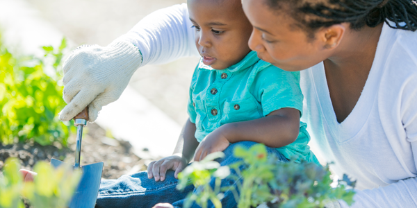 Educator and small child gardening together
