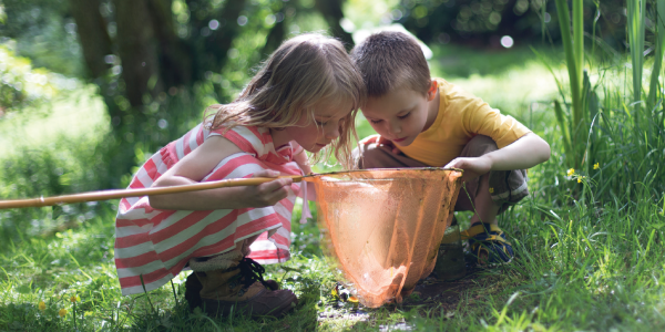 two children looking in an insect net