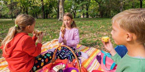 kids having a picnic