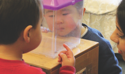 two toddlers and teachers looking in plastic box