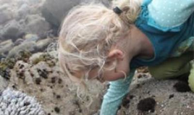 Young girl exploring rocks by the sea