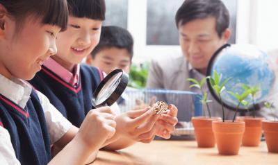 Children observe a hermit crab