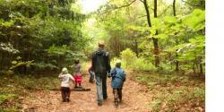 Parent walking with children in woods