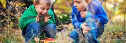 Two boys outside exploring a mushroom
