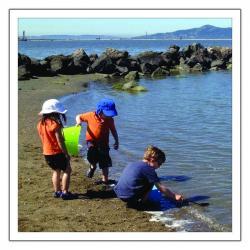 Children collecting rocks
