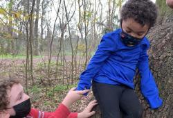 children climbing a tree
