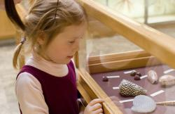 A girl looks at artifacts in a museum.