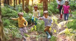 Several children run playfully through a forest.