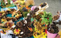 Pinecones and seasonal plants artwork