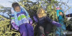Three preschoolers with holiday trees