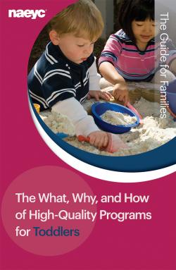 In-depth information for families and others on what makes a developmentally appropriate, high-quality learning environment for