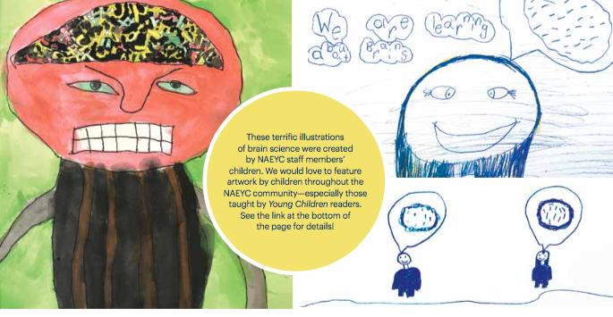 brain and child development